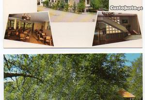 Carvalhelhos - lote de 5 postais ilustrados