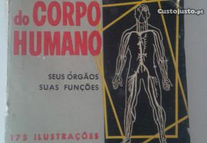 Maravilhas do Corpo Humano