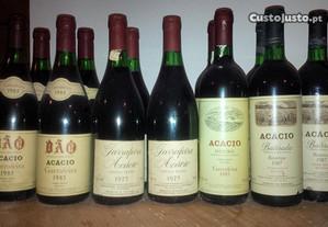 Garrafas de vinho maduro caves Acácio