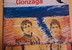 Livro A escola de São Luís Gonzaga - Franco Sousa