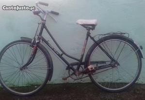 Bicicleta Pasteleira de senhora Mayal