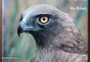 Oiseaux de Proie / Alan Richards