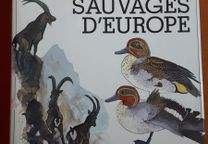 Les Animaux Sauvages d´Europe