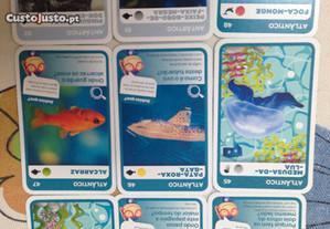 Cartas do Pokemon