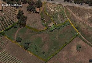 Terreno agro-pastoril com ruína