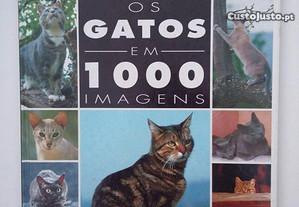 Os Gatos Em 1000 Imagens