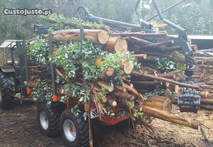 Reboque Florestal Novo 8000kg chapeado com grua