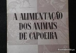 A alimentação dos animais de capoeira