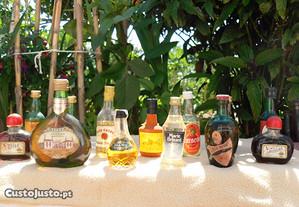 Coleção de 254 garrafas miniatura antigas