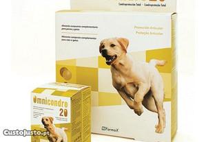 Omnicondro 20 - Protetor das articulações do cão