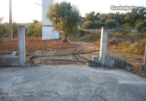 Olival c/ cerca 3000 m2