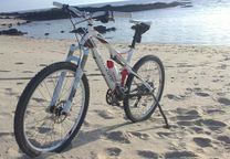 Bicicleta Specialized Epic Carbono, roda 26