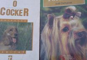 Raças de Cães (Cocker e Yorkshire)