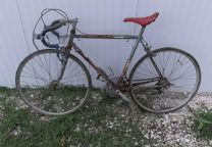 Bicicleta AIDAN