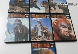 Pré-História 10 DVD's