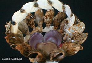 Cesto de conchas e búzios