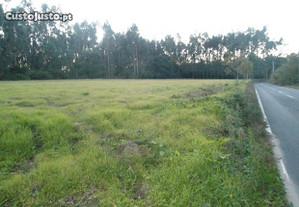 Terreno para 6 moradias isoladas, Ilhavo