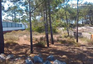 Terreno T3 900,00 m2