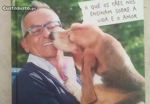 Vida de Cão de Manuel Luís Goucha