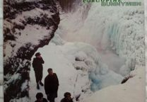 LP/Echo & the Bunnymen-Porcupine 1983