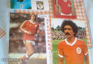 Posters jogadores Benfica