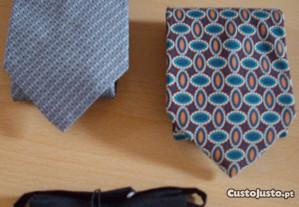 lote gravatas e pappillon