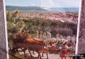 cartaz antigo Viana Castelo 1970