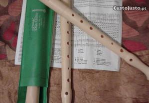 flautas, marca, hooner, ( várias ), novas