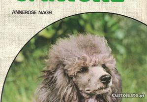 O Caniche de Annerose Nagel