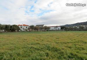 Terreno Para Construção  Em Santa Marinha E...