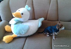 Pato Gigante Peluche com 80 cm RARO