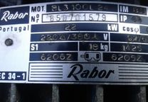 Motor trifasico 1425 rpm