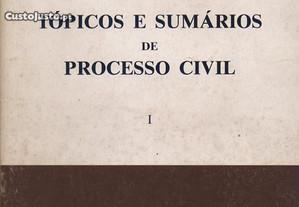 Tópicos e Sumários de Processo Civil