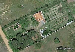Quinta e Herdade T3 156,00 m2