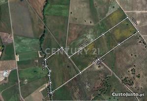 Quinta e Herdade T2 183,00 m2