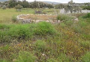 Terrenos e Quintas