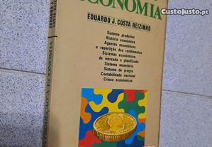 Introdução à Economia (portes grátis)