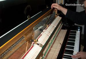 Técnico afinador de pianos . LISBOA