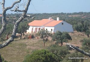 Quinta e Herdade T7 295,64 m2