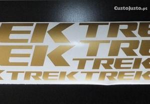 Trek kit dourado bike