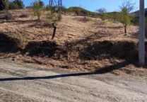 Terrenos rústicos