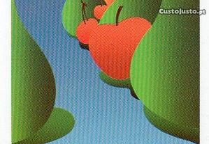Lamego - Expodouro - calendário 1990/1991
