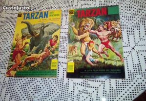 Tarzan dos Macacos