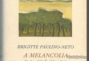 Brigitte Paulino-Netto - a melancolia do geógrafo