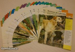 36 Fichas sobre Cães de Raça, Planeta de Agostini