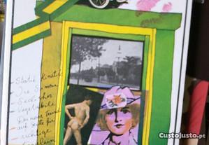 Mário de Andrade, Amar verbo intransitivo