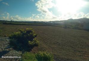 Campo de 1,54Ha em Barcelinhos