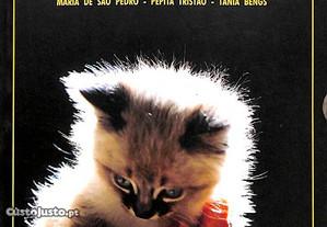 Gatos, gatinhos... - Vários autores