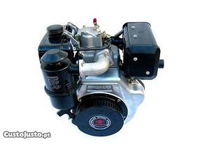 Motor Diesel Weima 12HP AE