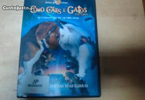 filme original como caes e gatos